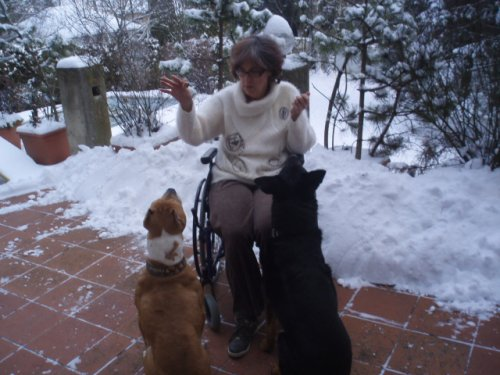 More Cookies on the terrace in the snow for the dogs.JPG