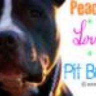 BrazilianPitbulls
