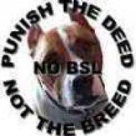 Bully_UK