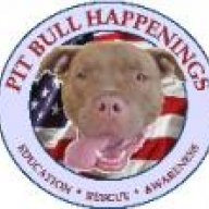 PitBullHappeningsRescue